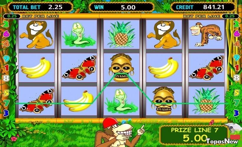 Игровой автомат Crazy Monkey: описание автомата, игровые символы, бонусная игра