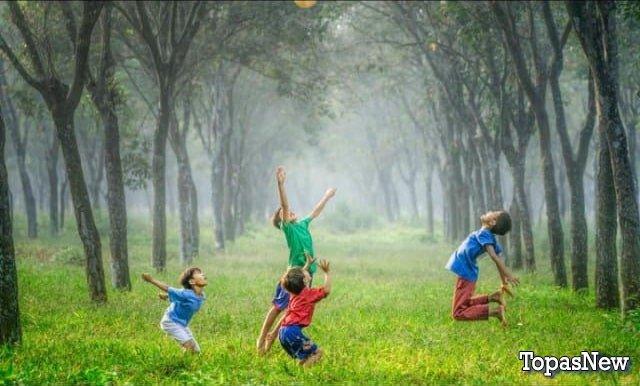 Дети играют с мячом в лесу - картинка